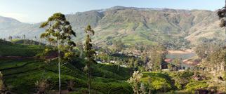 Hier sollten Sie jetzt sein: Sri Lanka