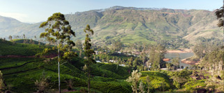 Be Here Now: Sri Lanka